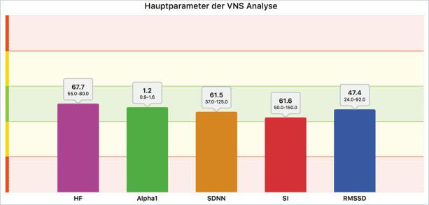 VNS-Analyse Hauptparameter